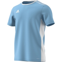 Adidas Entrada 18 SS Jersey - Clear Blue/White