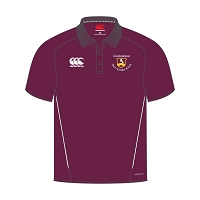 Ayr CC Team Dry Polo