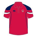 Derriaghy CC Sequel Polo Shirt
