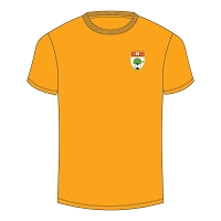 HSOG Jnr School PE T-Shirt Gold
